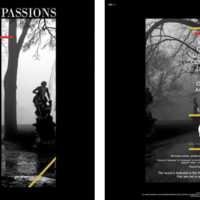 Passions - Passions