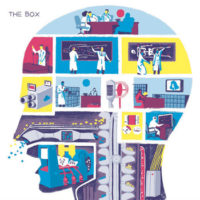 The Box - The Brain / The Door