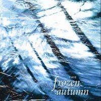 The Frozen Autumn - Seen From Under Ice