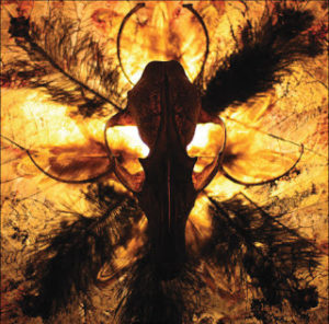 Silent Scream & Murnau´s Playhouse - Bones From the Backyard (Split Album)
