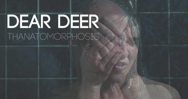 dear deer thanatomorphosis