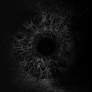 DDENT - Chien Noir