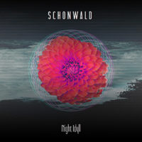 Schonwald - Night Idyll