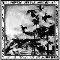 The Rip - The Rip