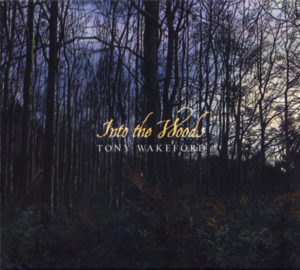 Tony Wakeford - Into The Woods