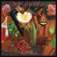 Tropical Popsicle - Dawn Of Delight
