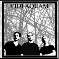 Vidi Aquam - Live In Switzerland