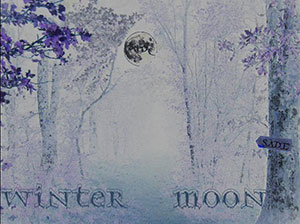 Compilation - Winter Moon
