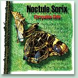 Noctule Sorix - Chrysalide Child