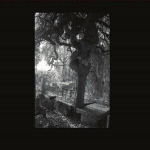 Spleen XXX - Poems Of Charles Baudelaire